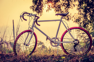 landscape image with sport vintage bicycle