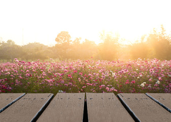 Fototapete - Wood floor scene of beautiful sunset sunrise sky over flower field. Holiday vacation travel relax background with copy space for decorate design.