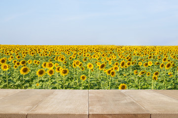 Wall Mural - Wood floor scene of beautiful blue sky over sunflower field. Holiday vacation travel relax background with copy space for decorate design.