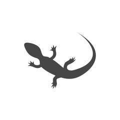Lizard icon vector - Illustration