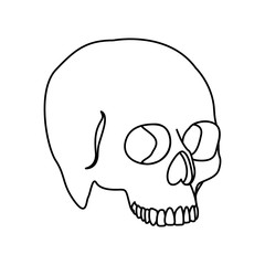 silhouette side view human skull icon flat vector illustration