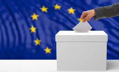 Voter on an EU flag background. 3d illustration