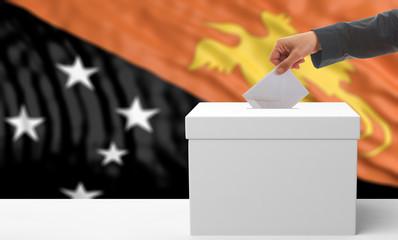 Voter on a Papua New Guinea flag background. 3d illustration
