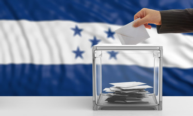 Voter on an Honduras flag background. 3d illustration