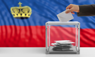 Voter on a Liechtenstein flag background. 3d illustration