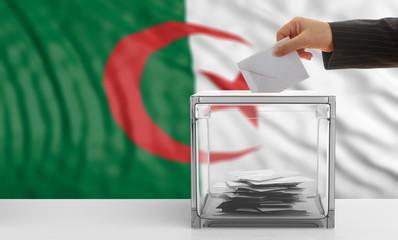 Algeria alections. Voter on an Algerian flag background. 3d illustration