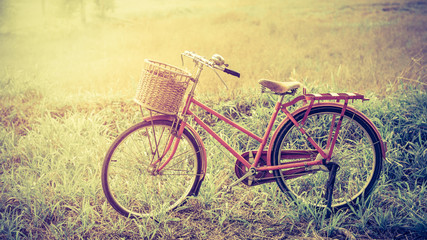 beautiful landscape image with red vintage bicycle at grass field ;vintage filter
