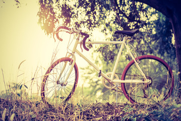 beautiful landscape image with sport vintage Bicycle at sunset;vintage filter style
