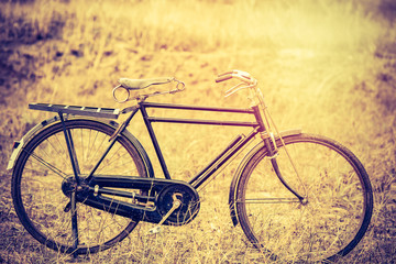 Vintage Old Bicycle with Summer grass field ; vintage filter style
