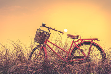 Vintage Bicycle with summer background at sun set (vintage process style)
