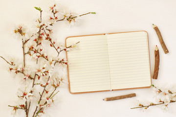 spring white cherry blossoms tree and open notebook