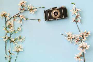 cherry blossoms tree next to old camera