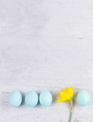 Row of blue eggs with yellow daffodil on aged wooden table desktop