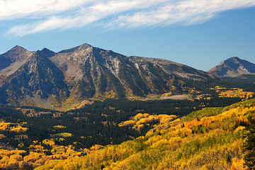 Autumn aspens near Kebler Pass  in Colorado