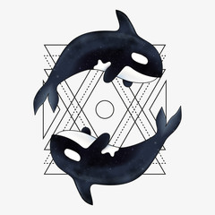 Orca vector illustration. Marine mammal. Killer whale with abstract geometric element.
