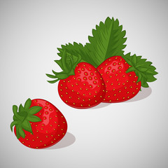 Bright juicy strawberry on grey background. Sweet delicious for your design in cartoon style. Vector illustration. Berries Collection.