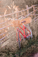 beautiful landscape image with vintage Bicycle at sunset ; vintage tone style