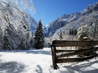 Wall Mural - Winter Alpine meadow in Slovenian Alps
