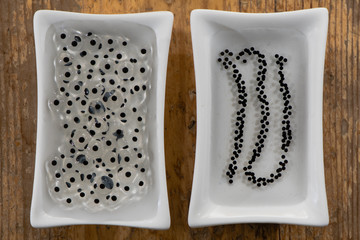 Frog and toad spawn comparison. Eggs of common frog (Rana temporaria) (left) and common toad (Bufo bufo) (right) side by side