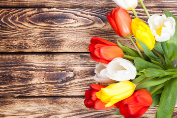 Tulips on wooden background with ribbon