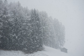 Schneefall 1