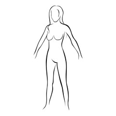 female stylized body contour icon vector illustration