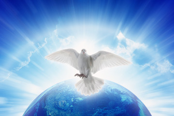 White dove symbol of love and peace flies above planet Earth Wall mural