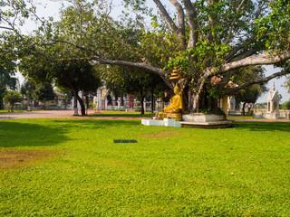 Wat Niwet Thammaprawat (Gothic style) Ayutthaya,Thailand