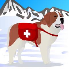 St Bernard dog lifesaver in mountains