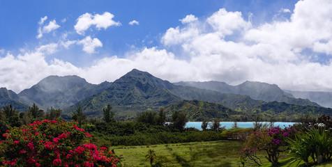 Wall Mural - Kauai garden and ocean