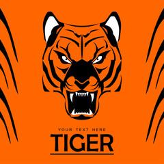 tiger, tiger head