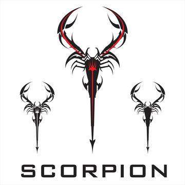 scorpion. elegant stylized scorpion