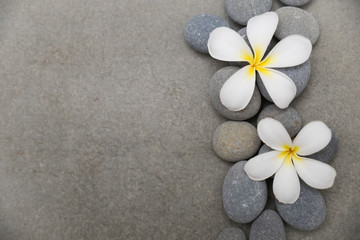 Stores à enrouleur Spa Two frangipani with spa stones on grey background.