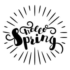 Inscription - hello srping . Lettering design. Handwritten typography. Vector
