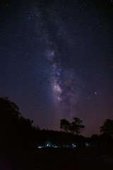 Milky way galaxy and silhouette of tree at Phu Hin Rong Kla National Park,Phitsanulok Thailand, Long exposure photograph, with grain