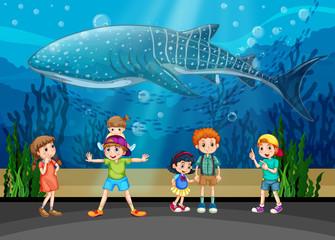 Children and killer whale in aquarium