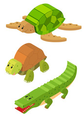 3D design for turtle and crocodile