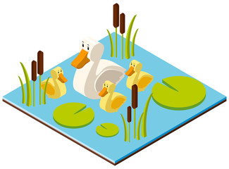 3D design for pond scene with ducks