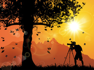 A Photographer, Tree, Sunset