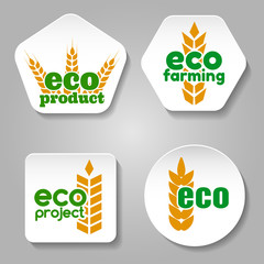 Ear of wheat labels templates. Eco grain product logo or badge vector set