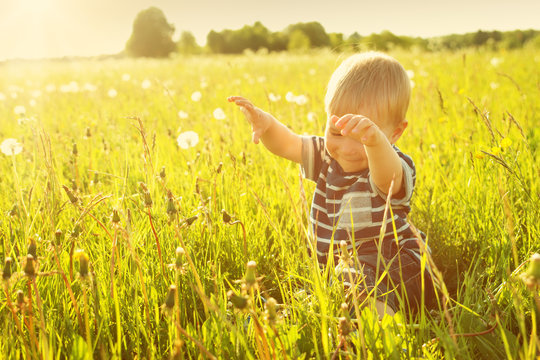 Baby boy sitting in grass on the fieald with dandelions