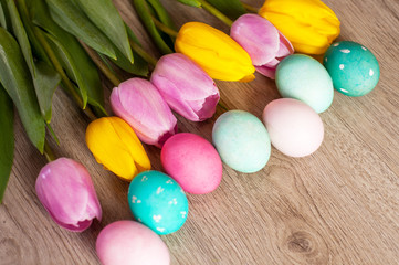 Easter composition of the tulips colored eggs cooked for the holiday on the wooden background