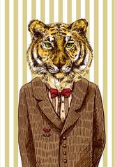 Tiger in jacket.
