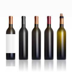 Set Of Open And Close Wine Bottles