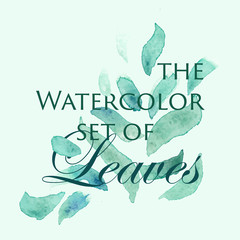 Vector watercolor logo image with green leaves.