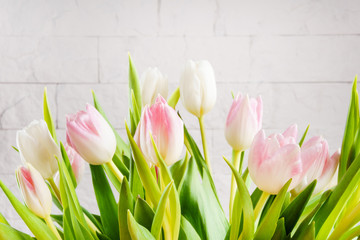 Acrylic Prints Tulip bouquet of white and pink tulips on a light background