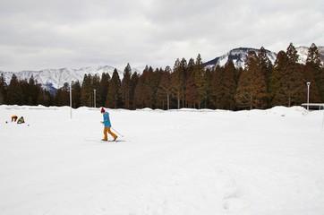 森でクロスカントリースキーを楽しむ人たち