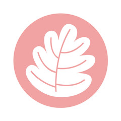 leafs plant natural icon vector illustration design