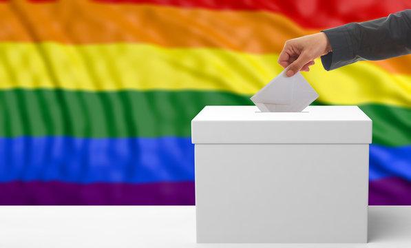 Voter on gay pride flag background. 3d illustration