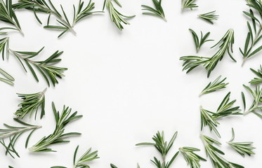 green leaf rosemary on white background. flat lay, top view.abstract frame